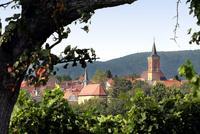 Nußdorf
