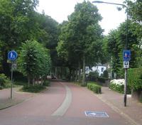 Fahrradstra�en sind beispielsweise in Holland weit verbreitet und ein bew�hrtes Mittel zur Verkehrsregelung