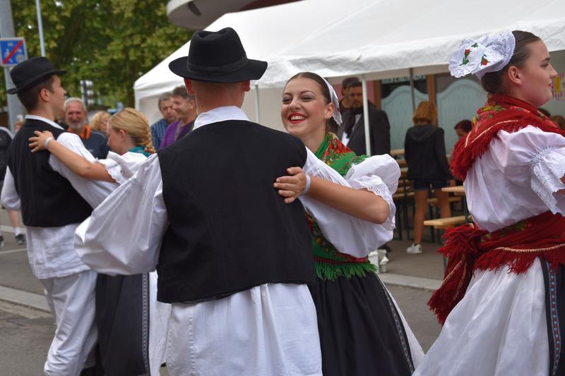 Musik und Tanz aus fünf Kontinenten: Zusätzliche Sonderfahrt zum Festumzug des Hopfenfestivals in Landaus Partnerstadt Hagenau am Sonntag, 25. August