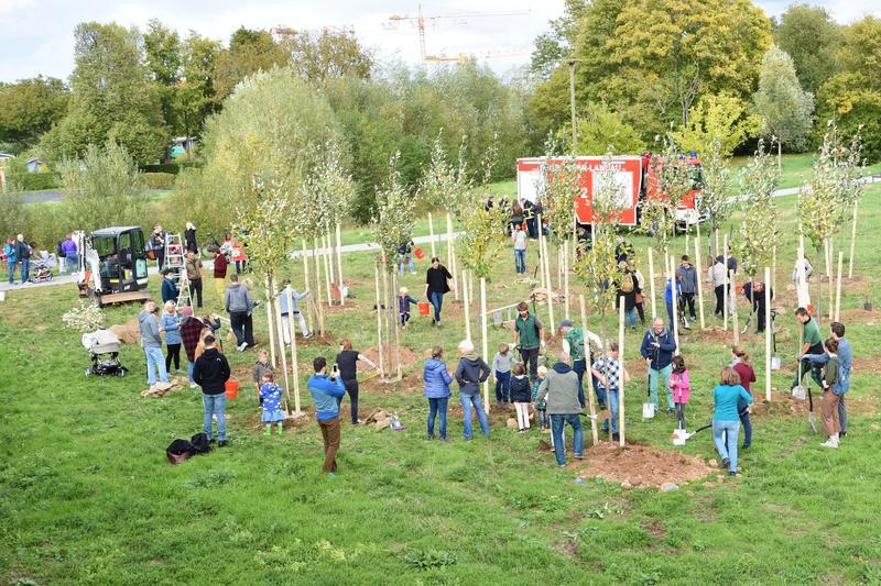 Gemeinsam sind wir stark: Rund 50 Landauerinnen und Landauer pflanzten auf dem früheren LGS-Gelände unweit des Aussichtsturms 25 Bäume.