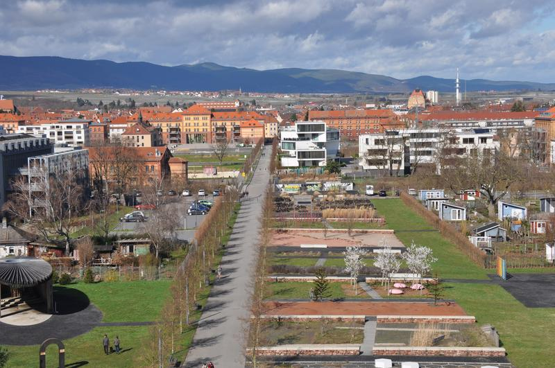 """Ein echtes Landauer Erfolgsmodell: Die Vergabe von Grundstücken mittels Konzeptvergabe im """"Wohnpark Am Ebenberg"""" gilt landes- und inzwischen auch bundesweit als vorbildlicher Weg der zukunftsfähigen Quartiersentwicklung."""