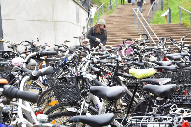 Ein eigenes Radnetz soll künftig die Bildungseinrichtungen im Landauer Stadtgebiet miteinander verknüpfen – hier der Unicampus in der Fortstraße.